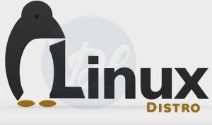 Best Linux Distro 300x178 - Best-Linux-Distro-300x178