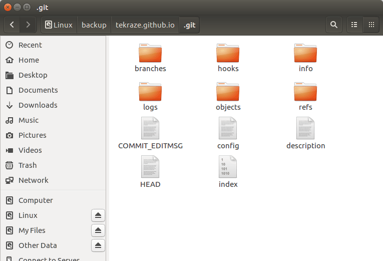 File Contained in .git Repository