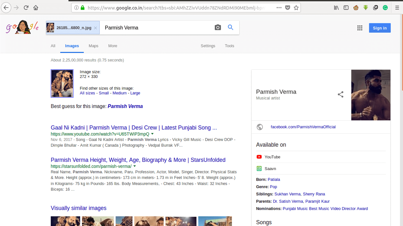 Search Image 1 result
