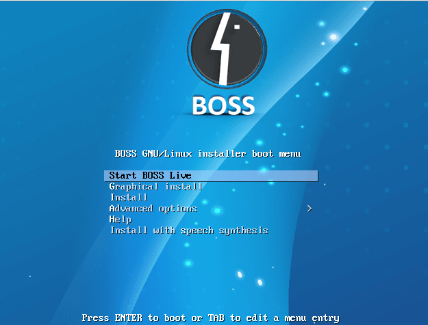 boss 1 - BOSS-Initial Site