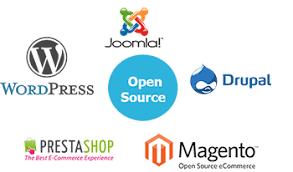 Softwares for Bulding Website in minutes