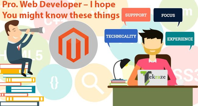 Pro. Web Developer – I hope You might know these things