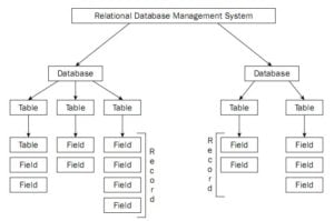 Select Ideal Database tekraze